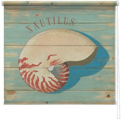 Seashells printed blind martin wiscombe