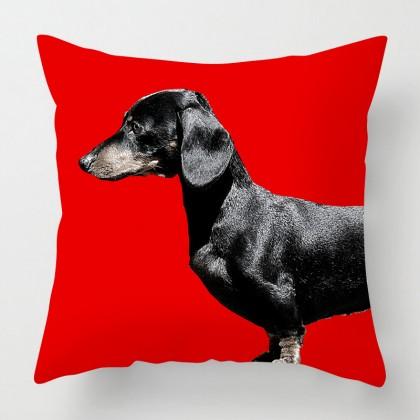 Dachshund dog cushion