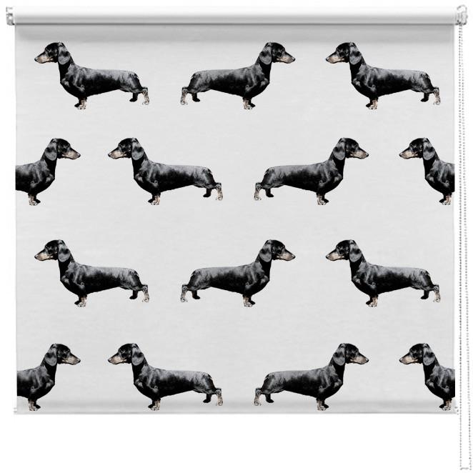 Dachshund Sausage Dog Pattern Blind Picture Printed